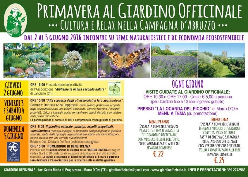 Primavera al giardino officinale morro d 39 oro te for Giardino officinale
