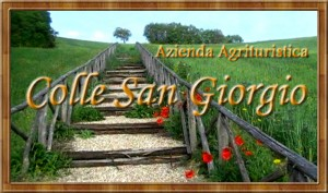 Logo Azienda Agrituristica Colle San Giorgio - Castiglione Messer Raimondo (TE)