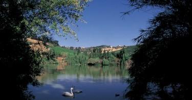 Tortoreto_oasi_naturalistica