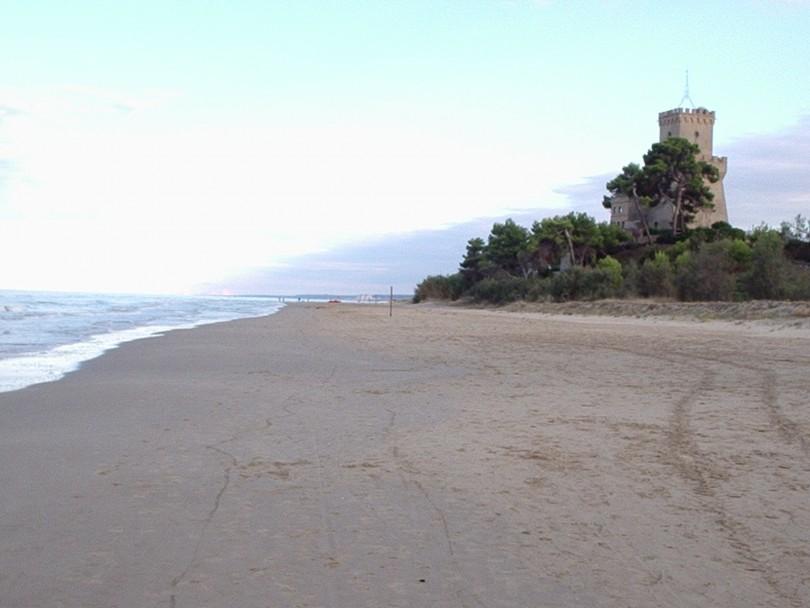 Oggi la Torre ospita il Museo del Mare, l'Info-point dell'Area Marina Protetta e il Centro Internazionale di Formazione Veterinaria dell'IZS A&M. L'A.M.P.