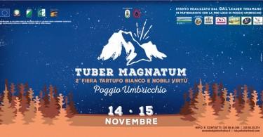 tuber magnatum