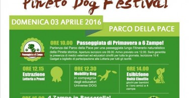 pineto dog festival